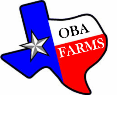 Oba Farms - Chickens for Sale - Goats- Turkey-Ducks - Wholesale Laying Hens Dallas Texas