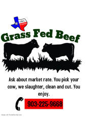 grass fed beef for sale dallas texas, We sell whole cow for slaughter